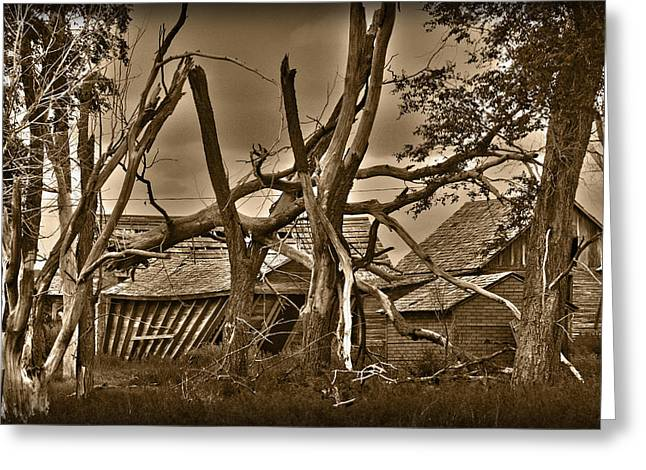 Old House Photographs Greeting Cards - Old Homestead Greeting Card by Shane Bechler