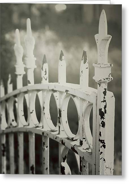 Geometric Image Greeting Cards - Old iron gate Greeting Card by Toni Hopper