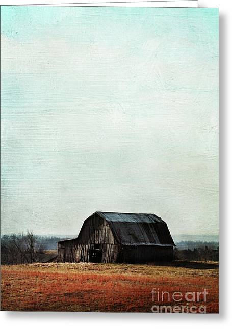 Tin Roof Greeting Cards - Old Kentucky Tobacco Barn Greeting Card by Stephanie Frey