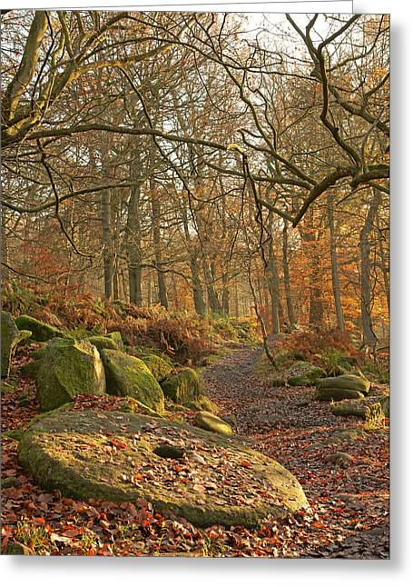 History Derbyshire Greeting Cards - Old Millstone Greeting Card by David Birchall