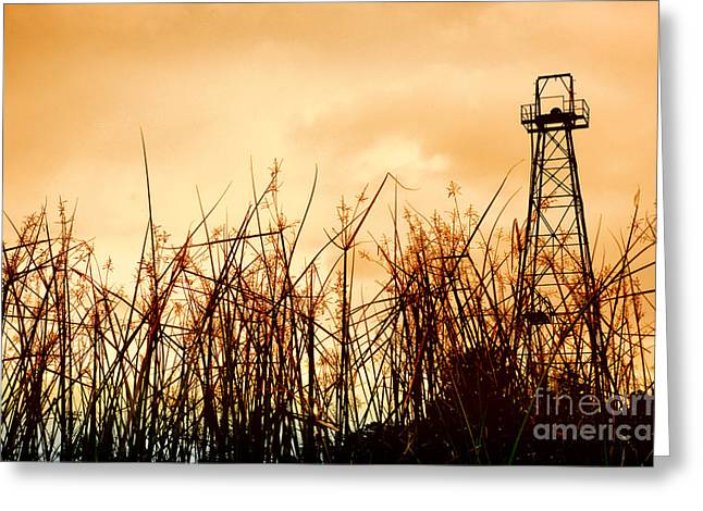 Gas Tower Greeting Cards - Old Oil Tower Greeting Card by Antoni Halim