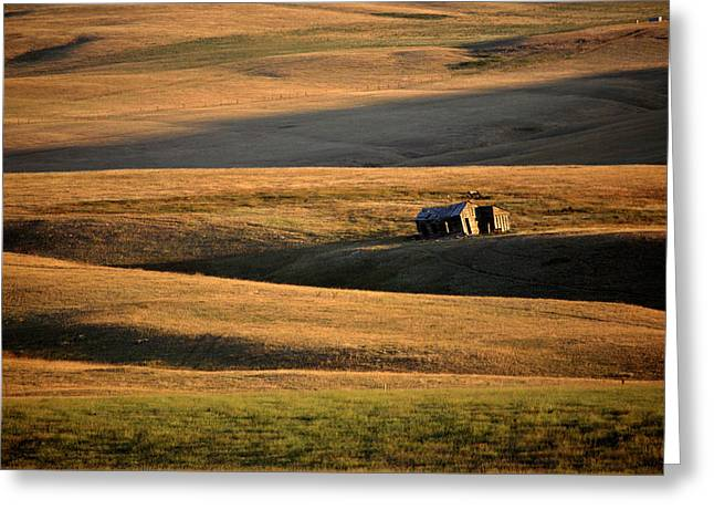 Alberta Foothills Landscape Greeting Cards - Old ranch buildings in Alberta Greeting Card by Mark Duffy