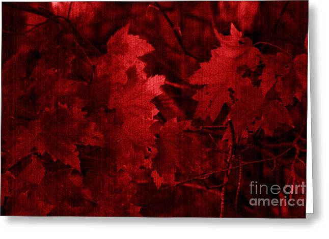 Red Leaves Greeting Cards - Old Red Greeting Card by Marjorie Imbeau