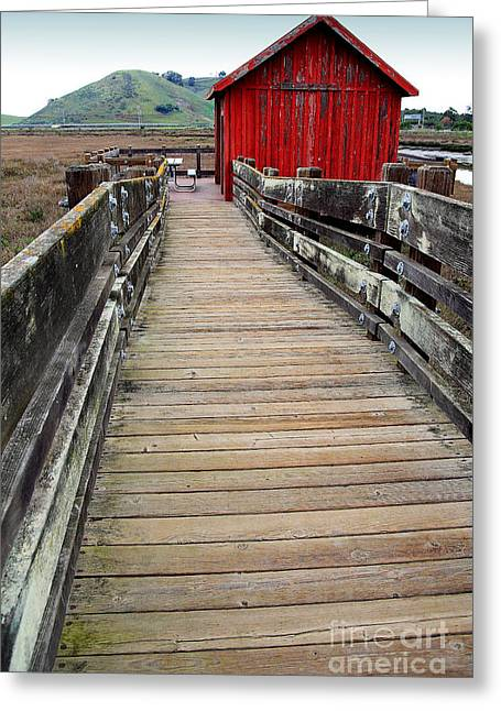 Wildlife Refuge. Greeting Cards - Old Red Shack At The End of The Walkway Greeting Card by Wingsdomain Art and Photography