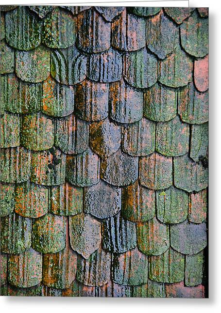 Old Roof Tiles Greeting Card by Jen Morrison