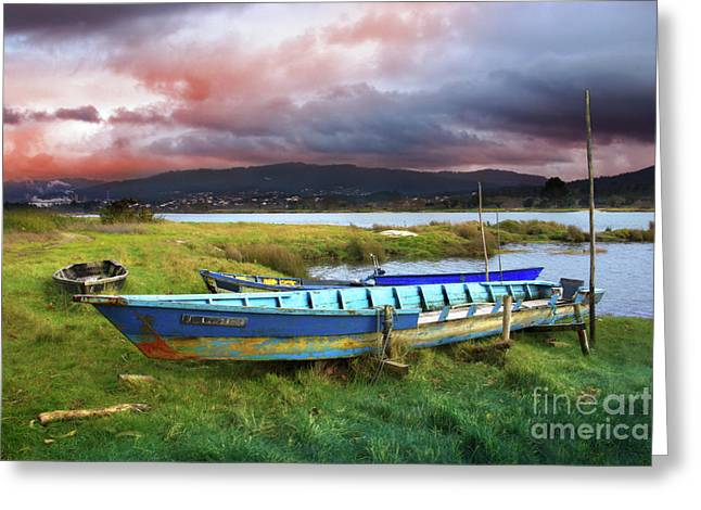 Winter Travel Greeting Cards - Old Row Boats Greeting Card by Carlos Caetano