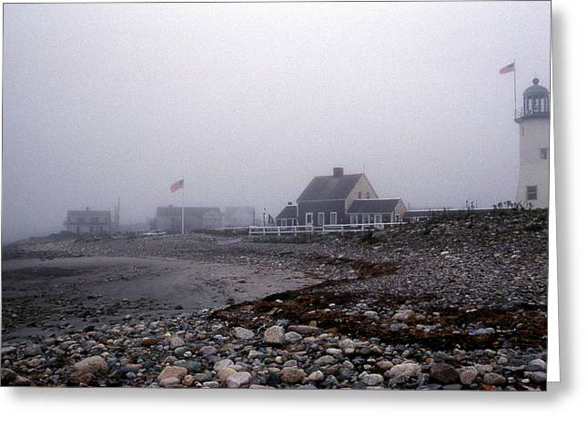 Legendary Lighthouses Greeting Cards - Old Scituate Lighthouse Greeting Card by Skip Willits