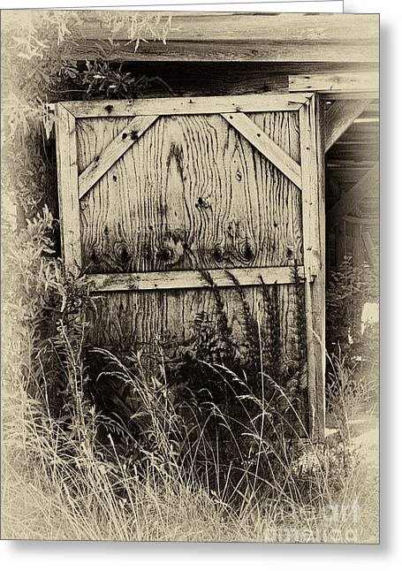 Whiteoak50 Greeting Cards - Old Shed Door Greeting Card by Eva Thomas