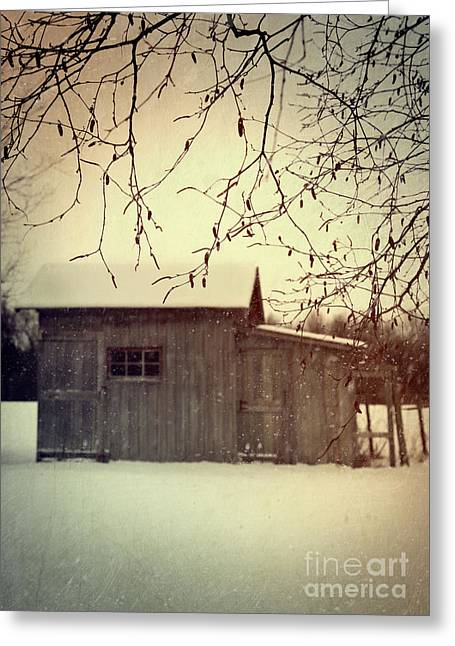 Winter Scenes Rural Scenes Photographs Greeting Cards - Old shed in wintertime Greeting Card by Sandra Cunningham