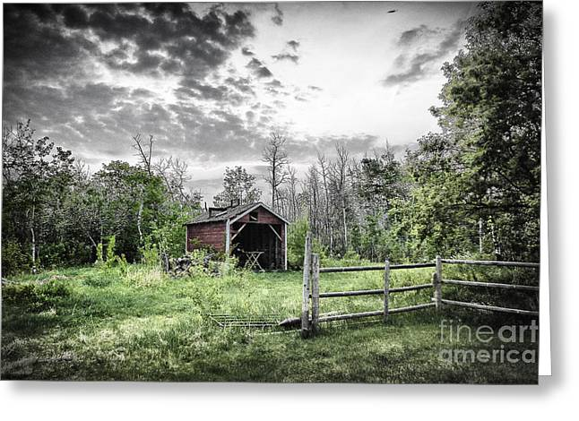 Shed Digital Art Greeting Cards - Old Shed Greeting Card by Lori Frostad