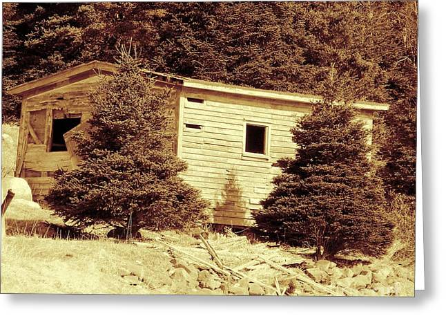 Shed Digital Art Greeting Cards - Old Shed Nothing Left but Memories Greeting Card by Barbara Griffin