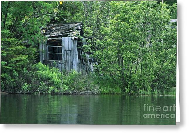 Shed Greeting Cards - Old Shed on the Lake Greeting Card by Marjorie Imbeau