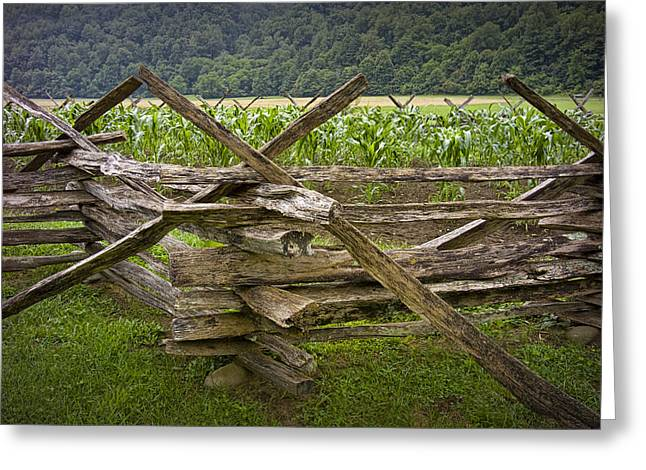 Split Rail Fence Greeting Cards - Old Split Rail Fence on a Farm in the Smokey Mountains No.696 Greeting Card by Randall Nyhof