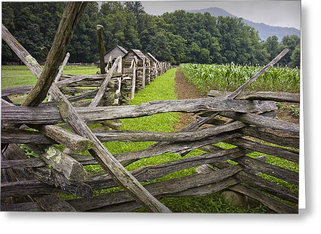 Split Rail Fence Greeting Cards - Old Split Rail Fence on a Farm in the Smokey Mountains Greeting Card by Randall Nyhof