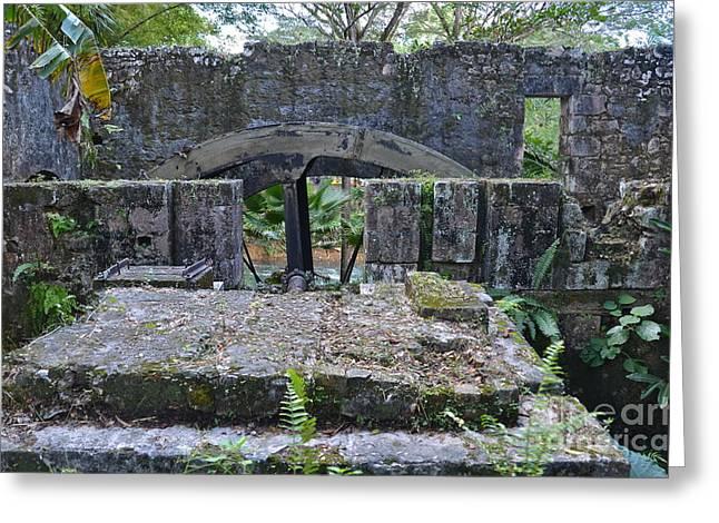 Martha Brae River Greeting Cards - Old Sugar Mill Water Wheel Ruins Greeting Card by Carol  Bradley