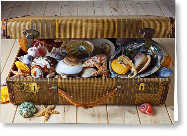 Marine Life Greeting Cards - Old suitcase full of sea shells Greeting Card by Garry Gay
