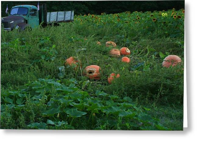 Old Trucks Greeting Cards - Old Truck And Pumpkins Greeting Card by Christopher Kirby
