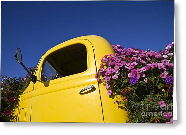 Upcycle Greeting Cards - Old Truck Converted to Flower Planter Greeting Card by David Buffington