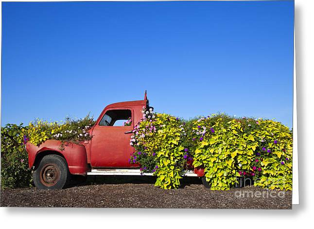 Upcycle Greeting Cards - Old Truck Converted to Garden Planter Greeting Card by David Buffington