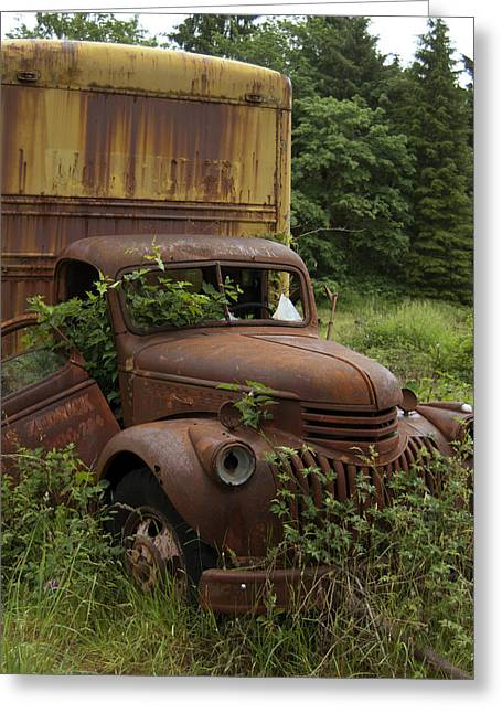 Old Trucks Greeting Cards - Old Truck in Rain Forest  Greeting Card by Gary Langley