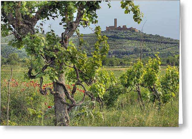 Hilltown Greeting Cards - Tuscany Castle Greeting Card by Al Hurley