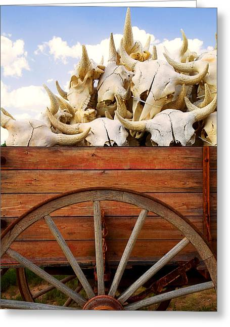 Buffalo Greeting Cards - Old wagon full of buffalo skulls Greeting Card by Garry Gay