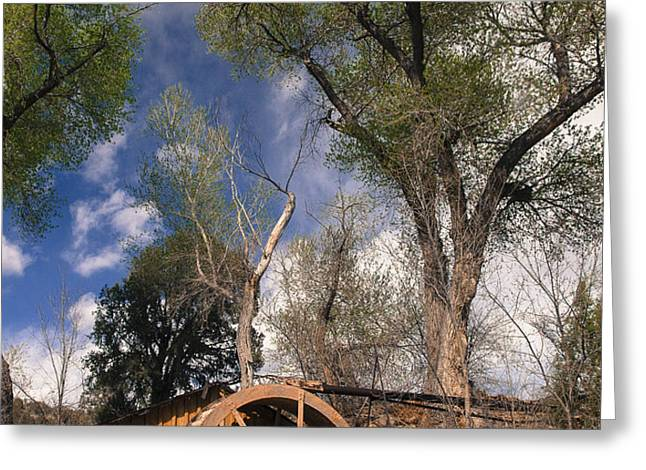 Old West Water Mill 1 Greeting Card by Darcy Michaelchuk