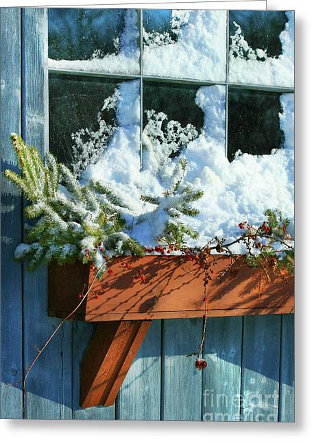 Branches Photographs Greeting Cards - Old window in winter Greeting Card by Sandra Cunningham