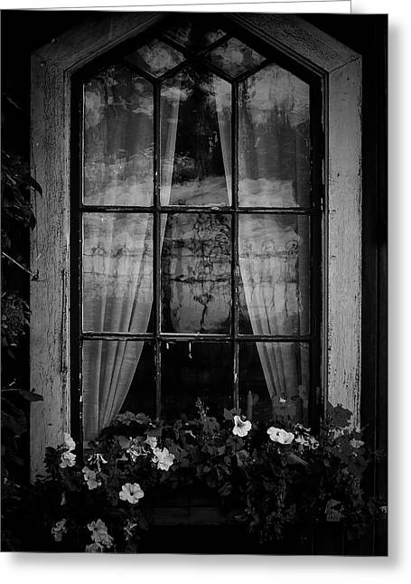 Old Window Greeting Card by Micael  Carlsson