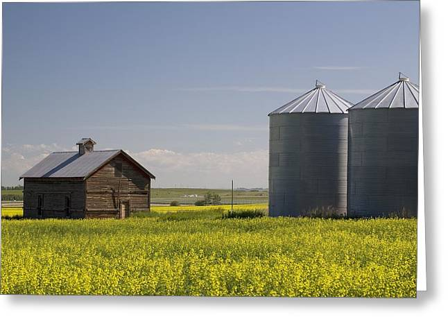 Grain Bin Greeting Cards - Old Wooden Barn And Metal Grain Bins In Greeting Card by Michael Interisano