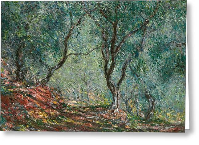 Dappled Greeting Cards - Olive Trees in the Moreno Garden Greeting Card by Claude Monet