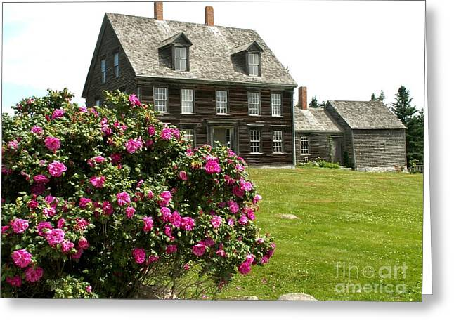 Olson House Greeting Cards - Olson House with Flowers Greeting Card by Theresa Willingham