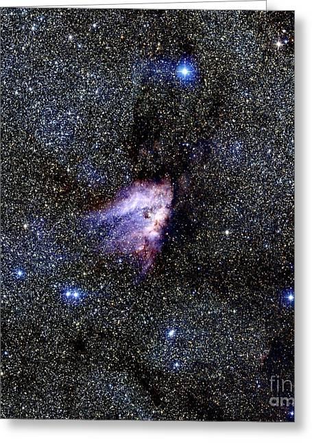 Stellar Evolution Greeting Cards - Omega Nebula Greeting Card by 2MASS project / NASA