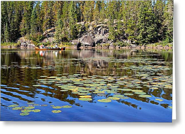 Canoeist Greeting Cards - On a Lily Pond - 1 Greeting Card by Larry Ricker
