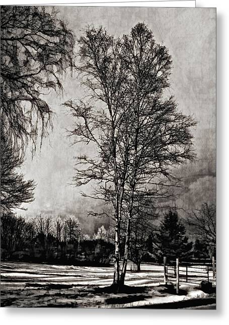 Back Roads Digital Art Greeting Cards - On a Winters Day monochrome Greeting Card by Steve Harrington