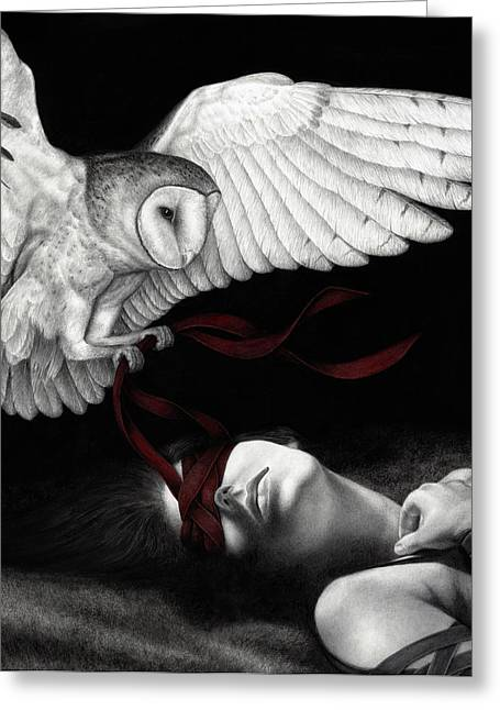 Black Greeting Cards - On Silent Wings Greeting Card by Pat Erickson