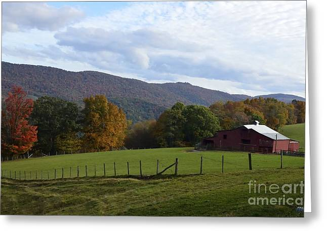 Early Autumn Greeting Cards - On Sully Road Greeting Card by Randy Bodkins