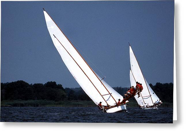 Sailer Greeting Cards - On The Boards Greeting Card by Skip Willits