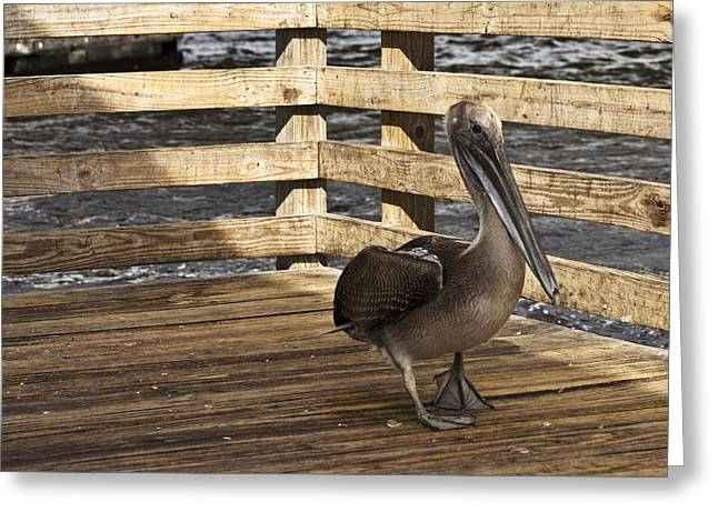 River Flooding Greeting Cards - On The Catwalk Ya On The Catwalk Greeting Card by Lawrence Ott
