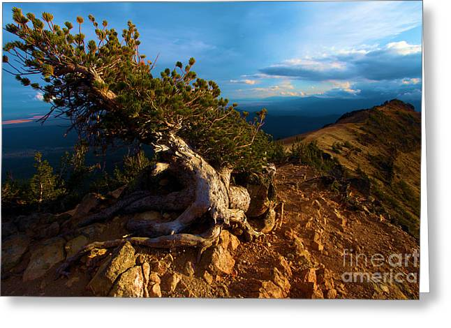 Crater Lake Sunset Greeting Cards - On The Edge Greeting Card by Adam Jewell