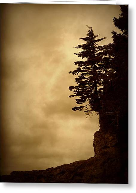 Port Renfrew Greeting Cards - On the Edge of the Bluff Greeting Card by Marilyn Wilson