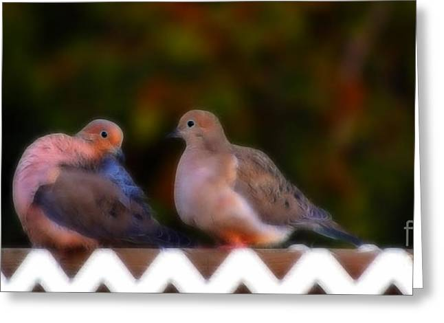 Mourning Dove Greeting Cards - On The Fence 2 Greeting Card by Marjorie Imbeau