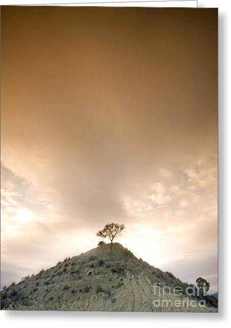 Costa Blanca Greeting Cards - On The Hill Greeting Card by Angel  Tarantella
