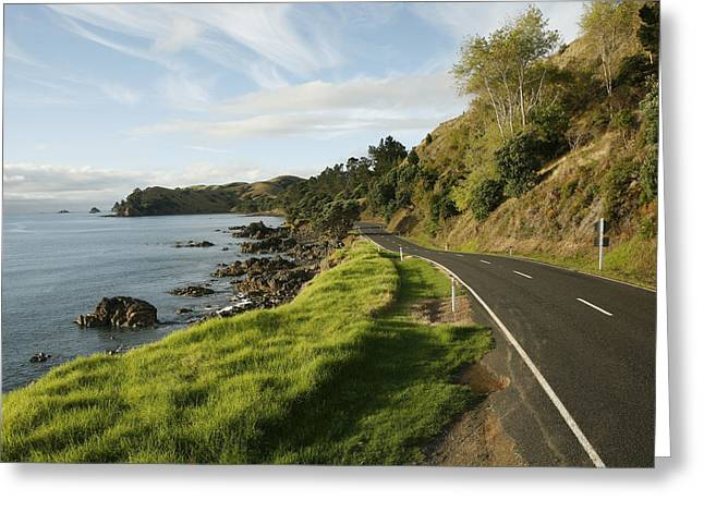 Black Top Greeting Cards - On The Road Around The Coromandel Greeting Card by Dawn Kish
