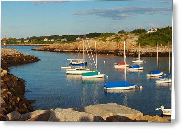 New England Ocean Greeting Cards - On the Rocks Greeting Card by Joann Vitali