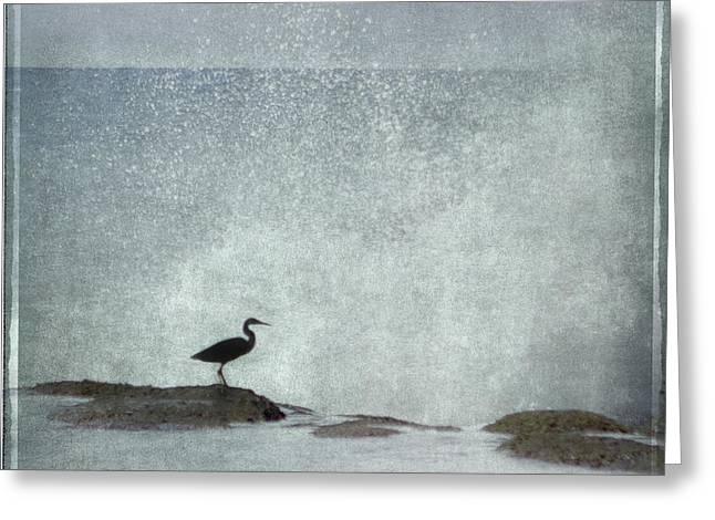 Surf Silhouette Greeting Cards - On the Rocks Greeting Card by Linde Townsend