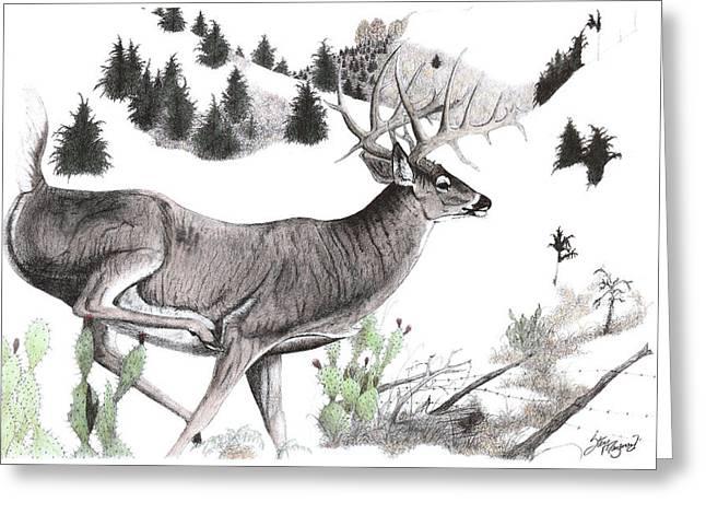 Jordan Drawings Greeting Cards - On the Run Greeting Card by Steve Maynard