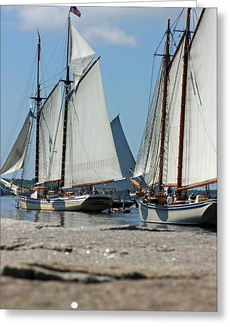 Tall Ships Greeting Cards - On The Sea Greeting Card by Becca Brann