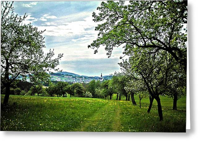 Fruehling Greeting Cards - On the Way to Gramastetten ... Greeting Card by Juergen Weiss