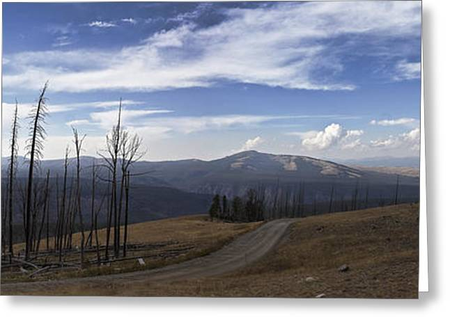 On Top Of The Mountains In Yellowstone National Park Greeting Card by Joe Gee